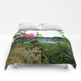 Cape Rose in Full Bloom Comforters