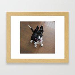 Little Doggy Framed Art Print