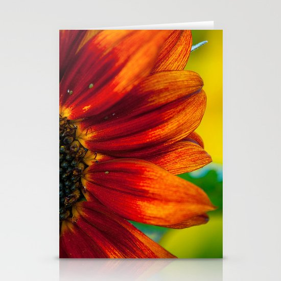 Red Sunflower Stationery Cards
