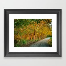 October Walk 3 Framed Art Print