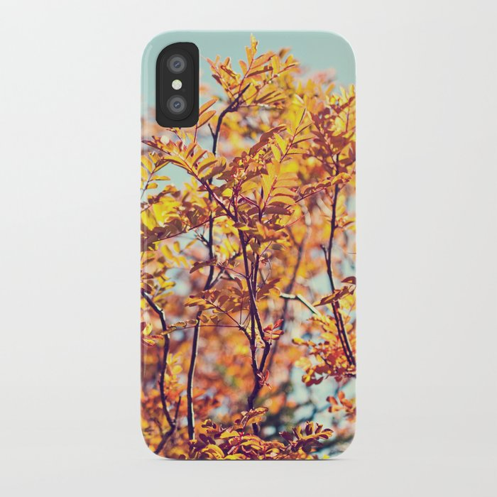 Mountain Fall iPhone Case