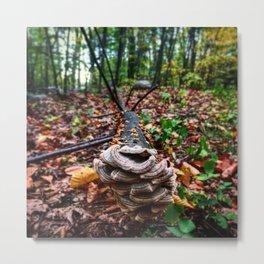 Nature gives me new life Metal Print
