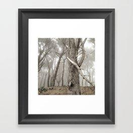 Print #10 Framed Art Print