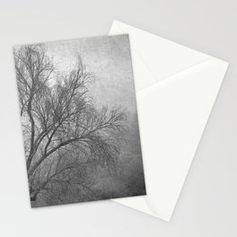 Morning in the fog. M Stationery Cards