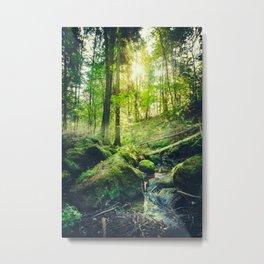 Down the dark ravine II Metal Print