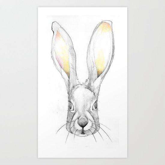 Jack Rabbit Art Print