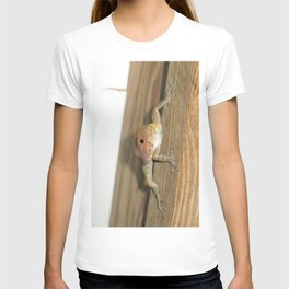 Watercolor People in Nature, AaP, Construction 04, and Lizard, St John, USVI T-shirt