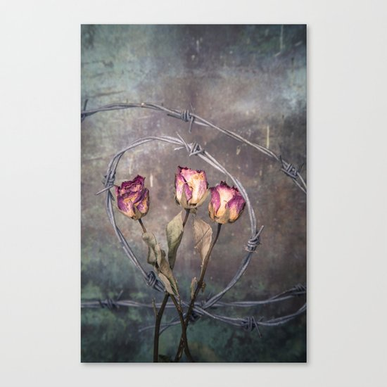 Trapped Roses Canvas Print