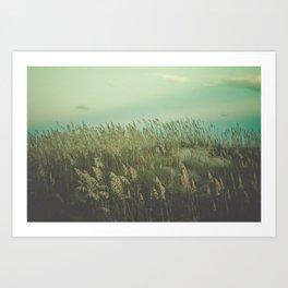 Summer Meditation Art Print