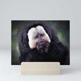 White-faced Saki Monkey Mini Art Print