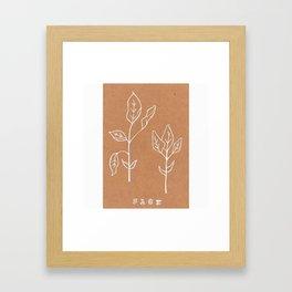 Sage Art Print Design —Herbal Botanical Drawing — Art Print —White Ink Sage Art Print Framed Art Print