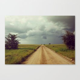 Storm Rolls into the Serengeti Canvas Print