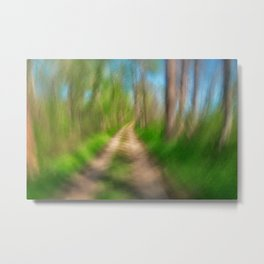 Spinning Sycamore Trail Metal Print