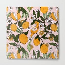 Succulent sweets oranges Metal Print