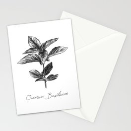 Basil Botanical Illustration Stationery Cards
