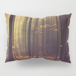 Light Hunters - Abstract orest in Sunlight Pillow Sham