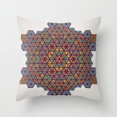 Blunt Physics. Throw Pillow