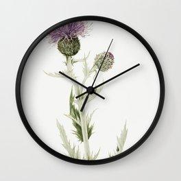 Prairie Thistle (Cirsium undulatum) (1923) by Mary Vaux Walcott Wall Clock