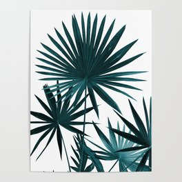 Fan Palm Leaves Jungle #1 #tropical #decor #art #society6 Poster