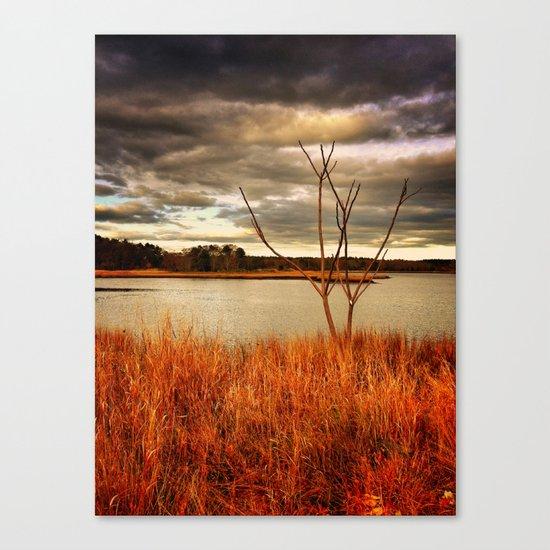 Fall Stalk Canvas Print