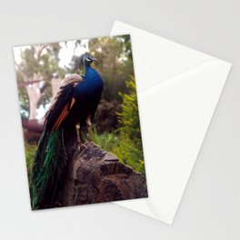 Peacock Rock Stationery Cards