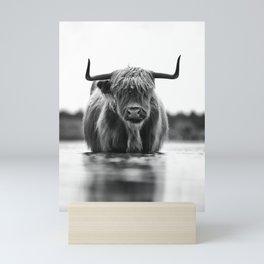 Scottish highlander cow in the water!  Mini Art Print