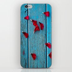 Rows of roses iPhone & iPod Skin