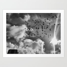 Living Skies Art Print