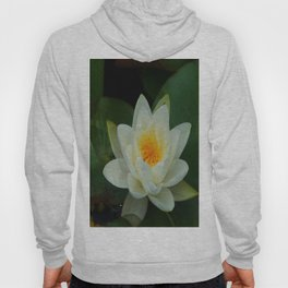 Lovely Lily Hoody