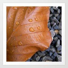 autumn leaf macro II Art Print