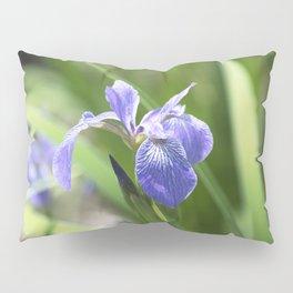 Longwood Gardens - Spring Series 234 Pillow Sham
