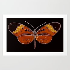 Untitled Butterfly 3 Art Print