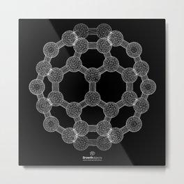 GEOMETRIC NATURE: MOLECULAR SOCCER b/w Metal Print