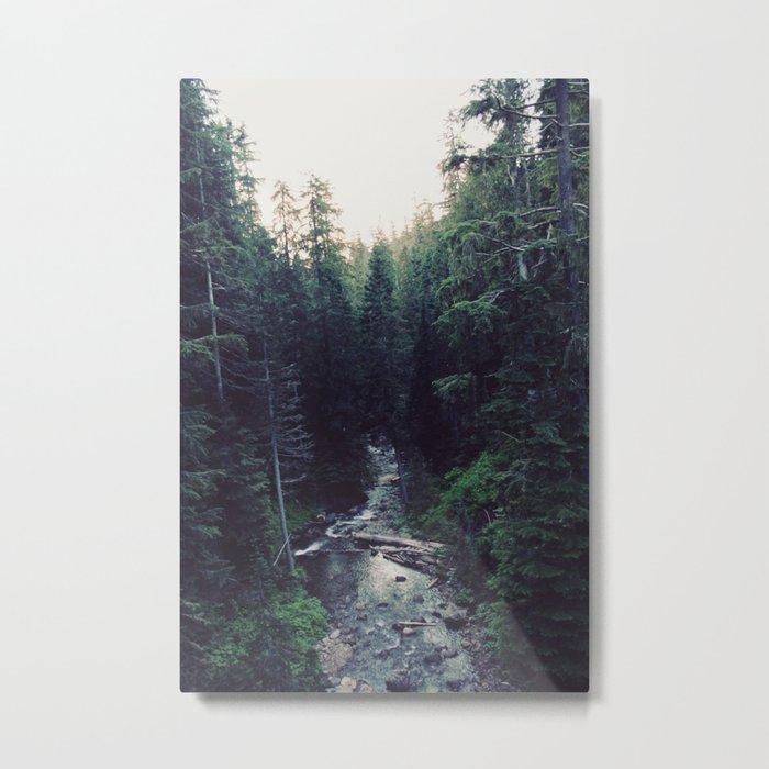Oregon x Rainier Creek Metal Print