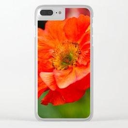 Geum Flower, Var. Scarlet Tempest Clear iPhone Case