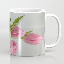Gifts from the garden Coffee Mug
