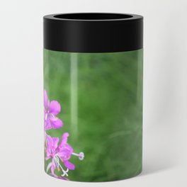 Fireweed Wildflower Can Cooler