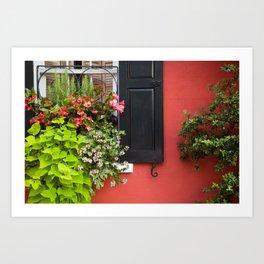 Window Box 1 Art Print