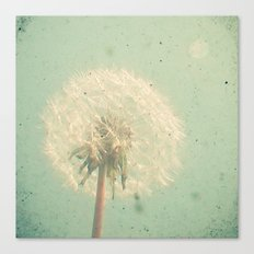 Dandelion Clock Canvas Print