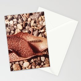 CALIFORNIA POINT LOBOS RESERVE NARA 543190 Stationery Cards