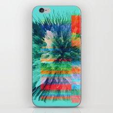 Hectachrome iPhone & iPod Skin