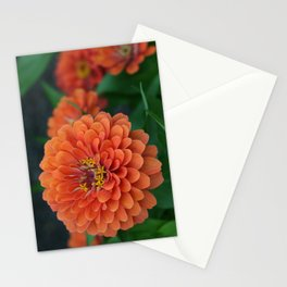 Big Bold Zinnia Flower (Photography: Vibrant Florals) Stationery Cards