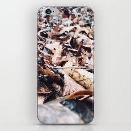 Each One For A Good Year iPhone Skin