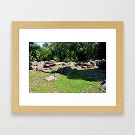 Park of stones Framed Art Print