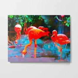 flamingoes Metal Print