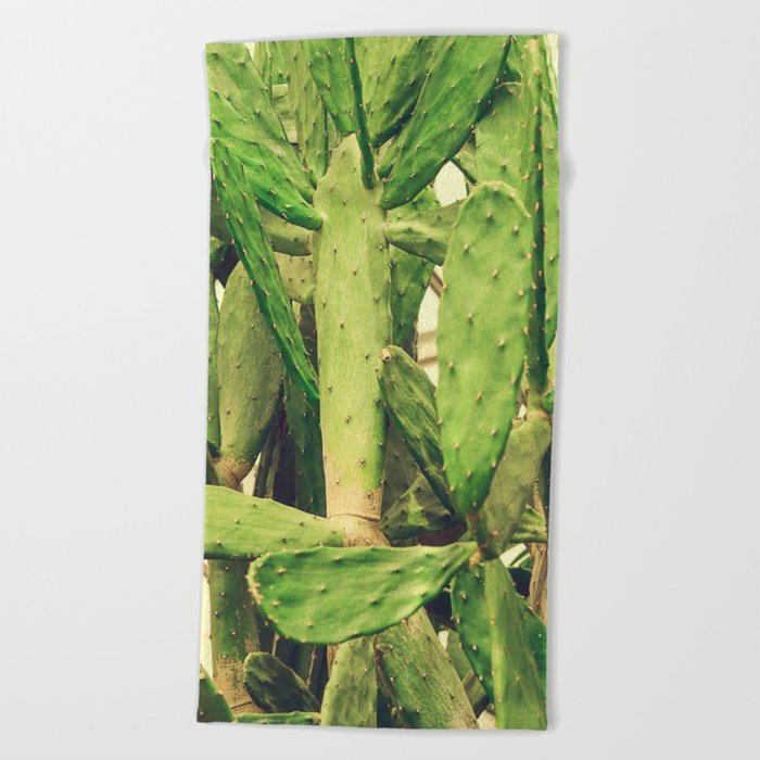 Southwest Desert Cactus Beach Towel