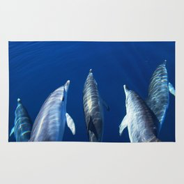 Playful and friendly dolphins Rug