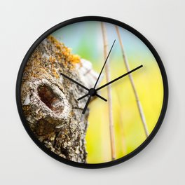 Beautiful hole from branch hollow focus on tree trunk bark Wall Clock