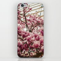 dc iPhone & iPod Skins featuring DC Blossoms  by Ashley Hirst Photography