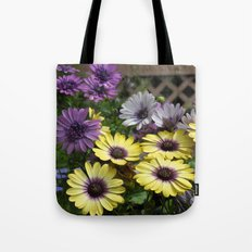 Yellow and Purple African Daisies Tote Bag